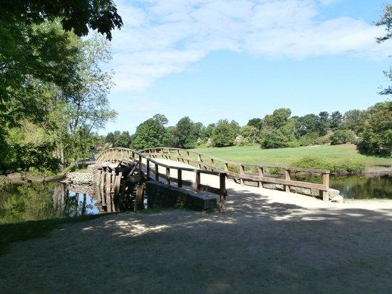 North Bridge: Il ponte e le colline