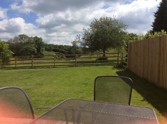 Greetham Valley Hotel: view from garden