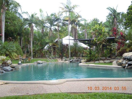 Paradise Links Resort Port Douglas: Pool