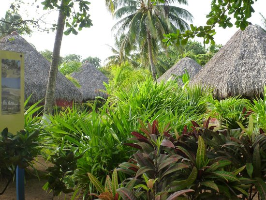 Paraiso Beach Hotel : Thatched Cabanas