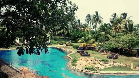 Bentota Beach by Cinnamon : the pool