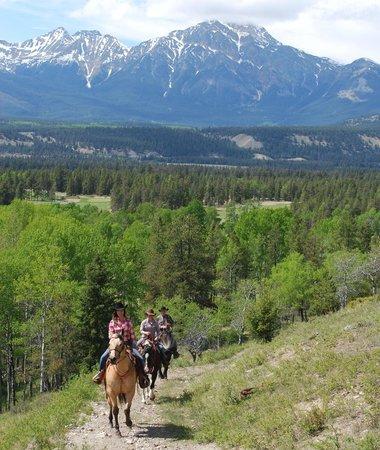Jasper Park Stables at the Fairmont Jasper Park Lodge: May 2014 Riding Pics