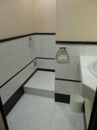 Hotel de France: Shower room/bathroom.