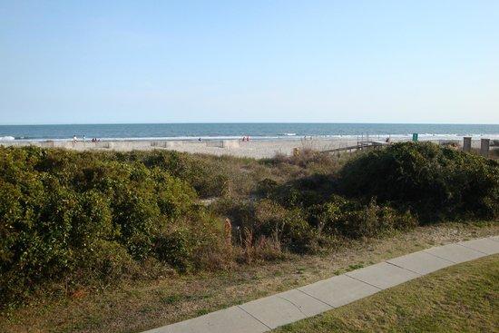 Wild Dunes Resort: The Beach