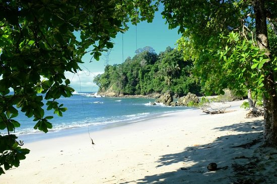 Playa Manuel Antonio: on the beach