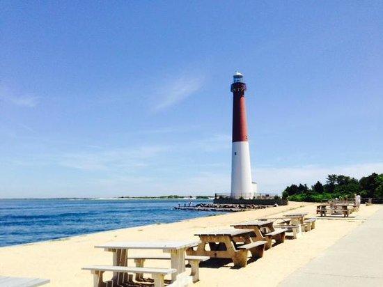 Barnegat Lighthouse State Park: Barnegat Lighthouse looks like a beautiful postcard!