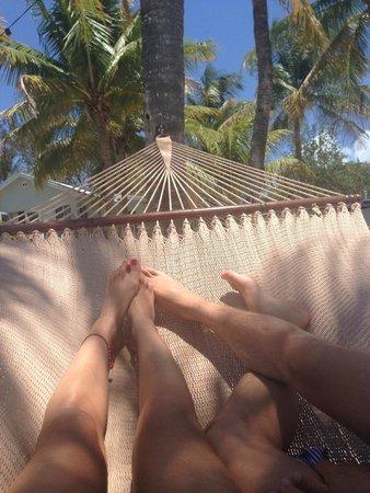 Coconut Palm Inn : Hängematte für 2
