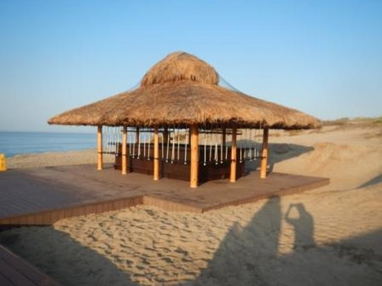 Secrets Puerto Los Cabos Golf & Spa Resort: Beach Bar