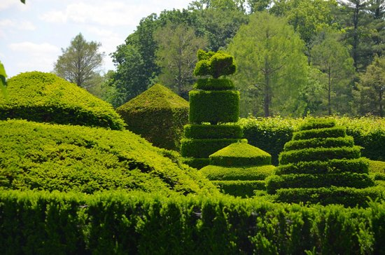 Longwood Gardens: Topiaries
