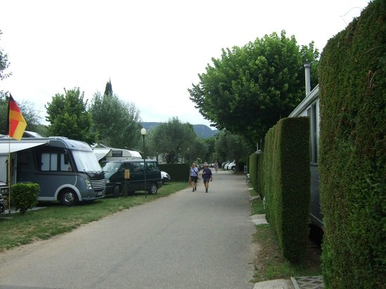 Camping Serenella: A view to the left of our pitch