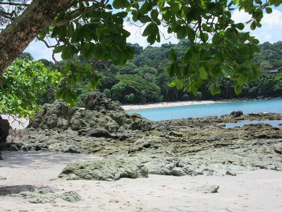 Parque Nacional Manuel Antonio: Paradise
