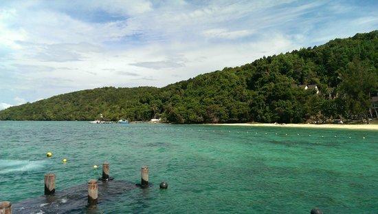 Manukan Island Resort: 桟橋前の海