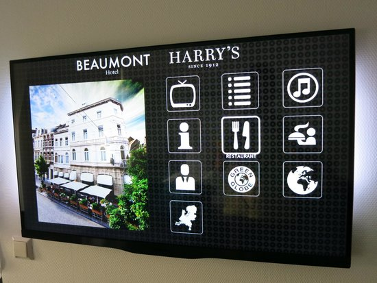 Hotel Beaumont: Cool slim television.