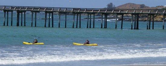 Cayucos Shoreline Inn...on the beach: Rent a Kayak - wayyy to much fun...