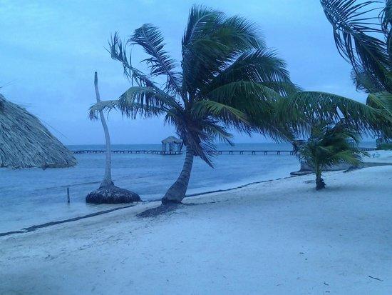 Royal Caribbean Resort : Beach