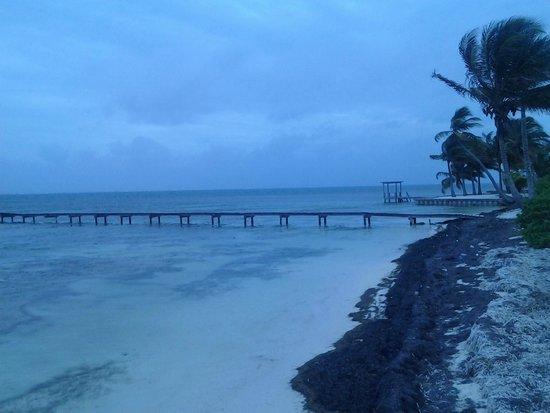 Royal Caribbean Resort : View of the dock