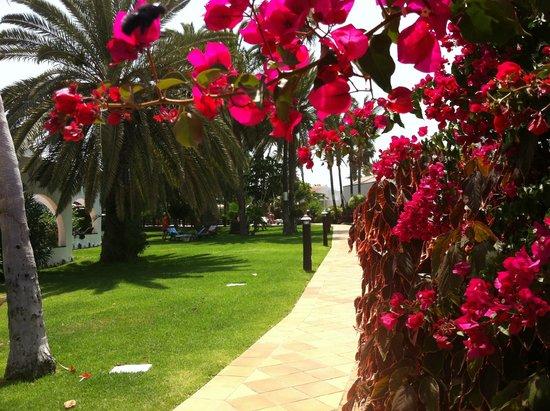 Sol Barbacan Hotel: zona bungalov
