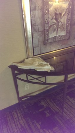 SpringHill Suites Houston Medical Center/NRG Park : nice place for cleaning rags...