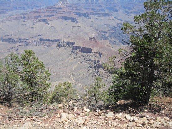 Grand Canyon Mule Tours by Xanterra: Great Views along the edge!