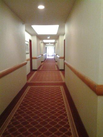 Best Western Plus Valemount Inn & Suites: Upstairs Hallway