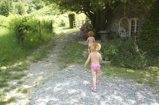 Le Murelle Farm: Under the Mulberry tree.