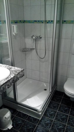 Hotel Victoria-Lauberhorn : Dusche
