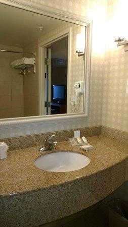 Hilton Garden Inn Great Falls: Bathroom sink