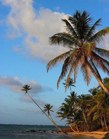 Yemaya Island Hideaway & Spa: Beach