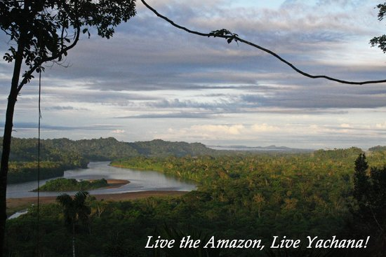 Yachana Lodge : Live the Amazon, Live Yachana