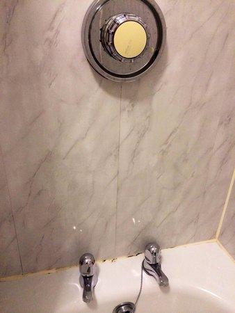 Gwesty Carreg Bran Hotel: Shower