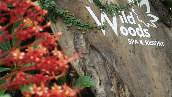 Wild Woods Spa and Resort: the entrance of the resort