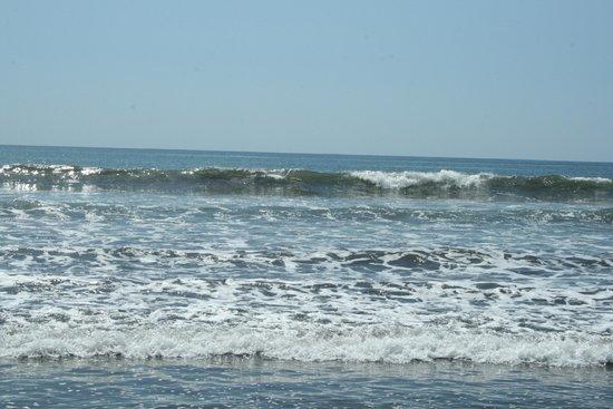Hotel Mar de Luz: Beach near by