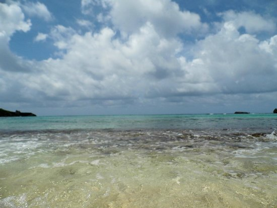 Winifred Beach : Clear Blue Water