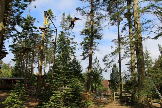 Center Parcs Whinfell Forest: Tree Trekking