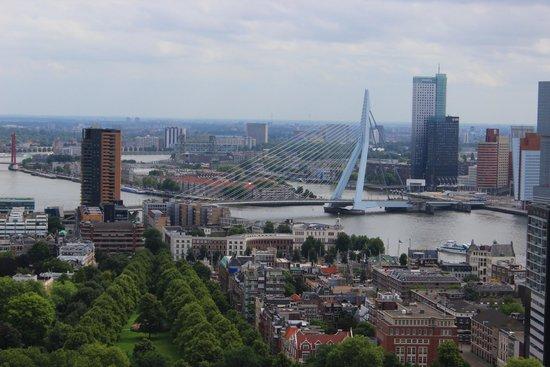 Euromast Tower: Erasmus bridge