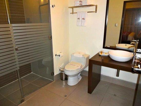 Allpa Hotel & Suites: salle de bain