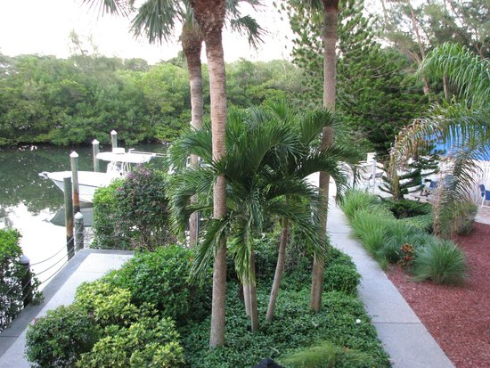 Longboat Bay Club: Another view from our unit