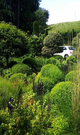 Lower House: Garden