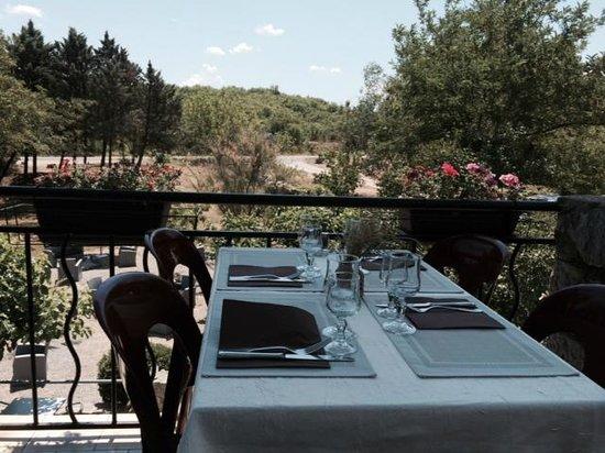 L'Olivier de Paiolive : vue de la terrasse