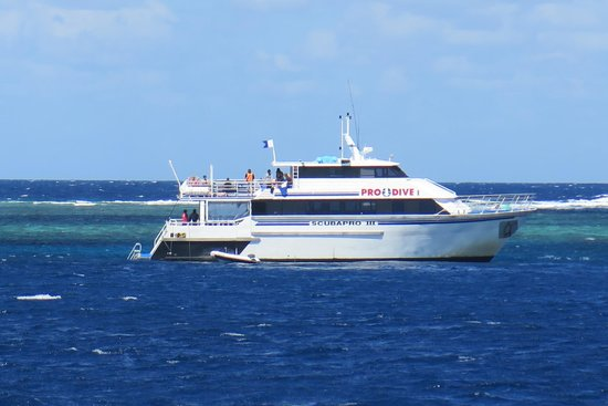 A sister vessel of scubapro picture of pro dive cairns day trips cairns tripadvisor - Pro dive cairns ...