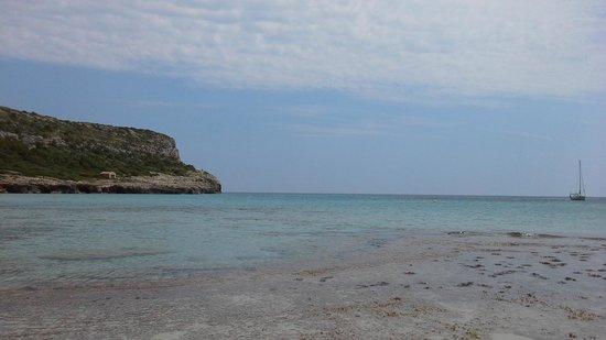 Sol Milanos Pinguinos: vanop het strand
