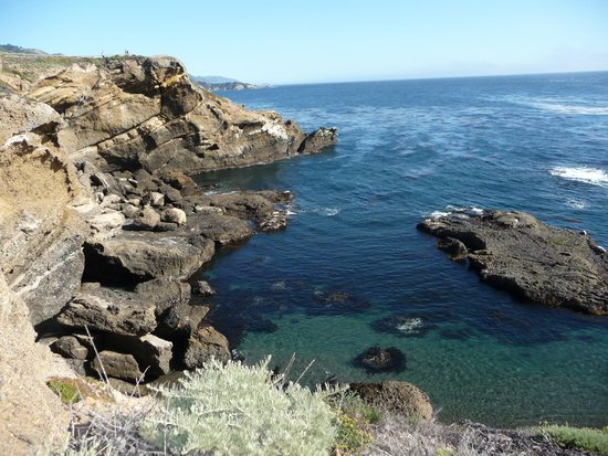 Point Lobos: peaceful ocean ambiance