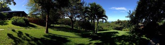 Hotel Luna Azul : Englische Gartenperfektion in Costa Rica