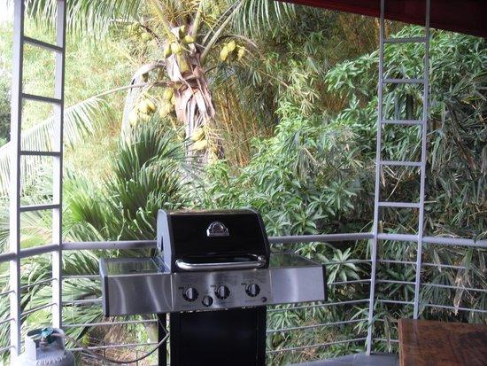 Villa Manuel Antonio: Nice grill & view