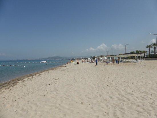 Palm Wings Beach Resort: Beach
