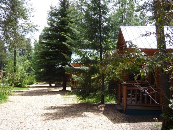 Silverwolf Log Chalet Resort: Cabin Exterior