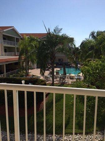 Doubletree Suites by Hilton Naples : pool