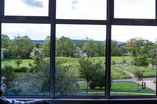 Lyrath Estate Hotel & Spa: View from Room