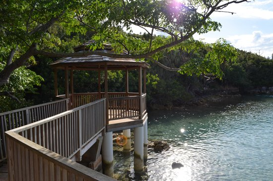 Grotto Bay Beach Resort & Spa : You can feed heaps of fish here. Great snorkelling spot too!