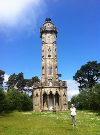 Hulne Park: Brizlee Tower on yellow route